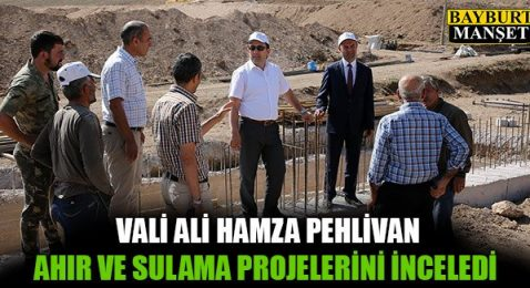 Vali Pehlivan Ahır ve Sulama Projelerini İnceledi